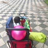 南部丘陵公園のおすすめ駐車場|ベビーカーやキャリーワゴン、三輪車を持っていくならココ!(四日市)