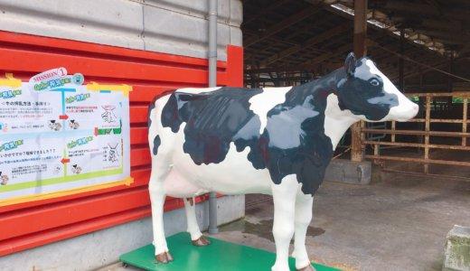 四日市市『ふれあい牧場』レビュー!動物と触れ合える無料施設で、ソフトクリームもおいしかったよ♪